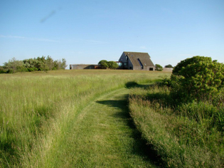 sagaponack-garden-norman-jaffe-laguardia-mown-grass-path-gardenista-e1457397377611.jpg