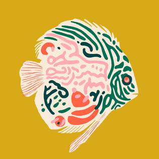 discus_fish.png?format=1500w
