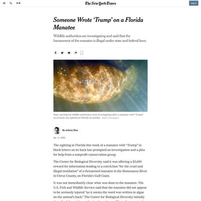Someone Wrote 'Trump' on a Florida Manatee