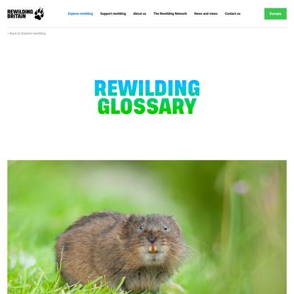 Rewilding glossary