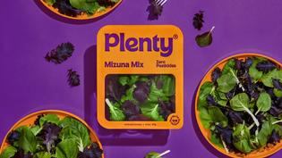 plenty-walsh_packaging-orange_graphic_design_itsnicethat.jpg