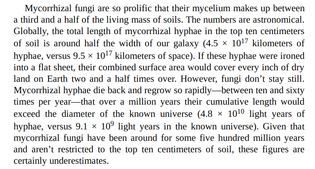 Mycorrhizal fungi are so prolific that their mycelium makes up between a third and a half of the living mass of soils.
