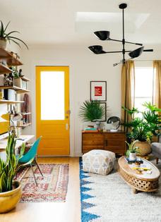 pinterest-yellow-inside-door-west-elm.jpg