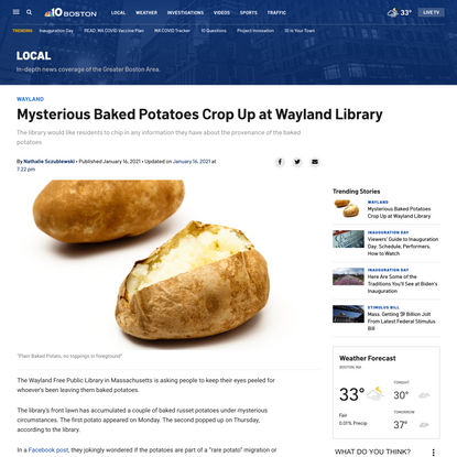 Mysterious Baked Potatoes Crop Up at Wayland Library