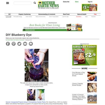 DIY Blueberry Dye | MOTHER EARTH NEWS