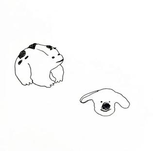 frog + dog