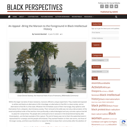 An Appeal --Bring the Maroon to the Foreground in Black Intellectual History | AAIHS