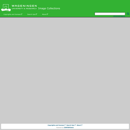 Wageningen University & Research - Image Collections - Wageningen University & Research - Image Collections