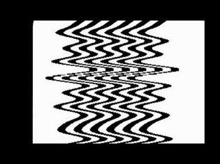 Critter & Guitari - Black & White Video Scope