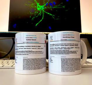 First publication mugs