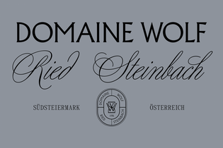 leichtfried_domaine_wolf_3-1080x720.png