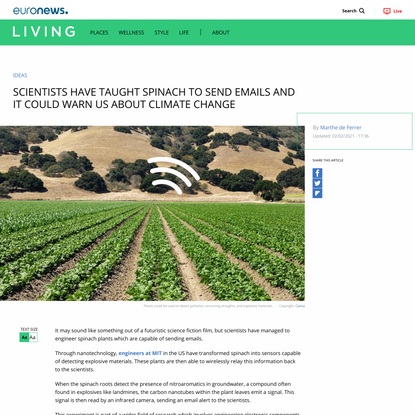 Scientists have taught spinach to send emails | Living