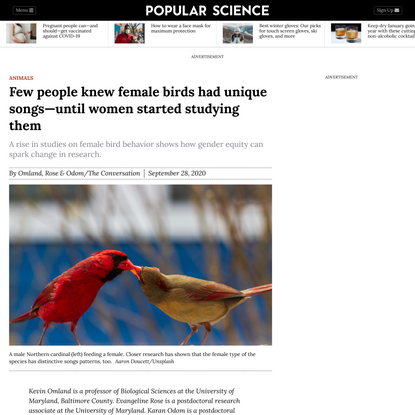 Few people knew female birds had unique songs—until women started studying them