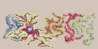 210203_sentient_beings.jpg