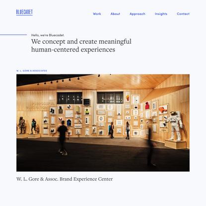Bluecadet - Inspired Design for the Digital Age