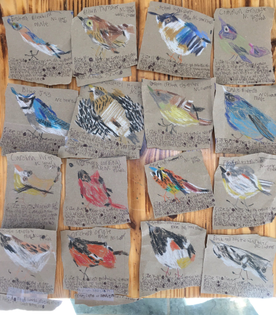 """Matthew Mullins: """"Sometime last week, totally unprompted, the 10yo began creating this collection of…bird info cards?…almost like trading cards. Strange but cool."""""""