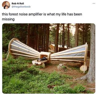 forest noise amplifier forest noise amplifier