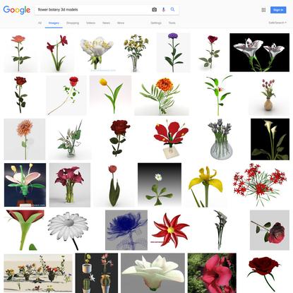 flower botany 3d models - Google Search