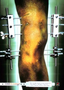 Coolboarders 2– Whybin\TBWA Sydney, 2000