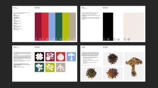 whitmanemorson-work-clover-v295-scaled.jpg