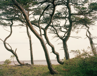 ignant-photography-felix-odell-landscapes-02.jpg