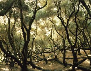 ignant-photography-felix-odell-landscapes-08-2048x1604.jpg