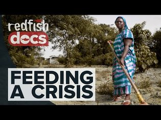 Feeding A Crisis: Africa's Manufactured Hunger Pandemic
