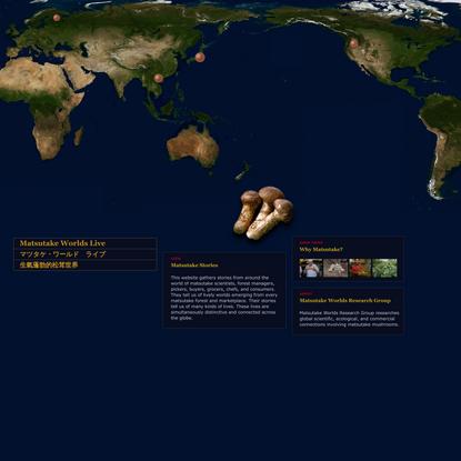 matsutake worlds live