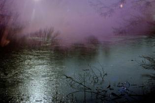 fog pond