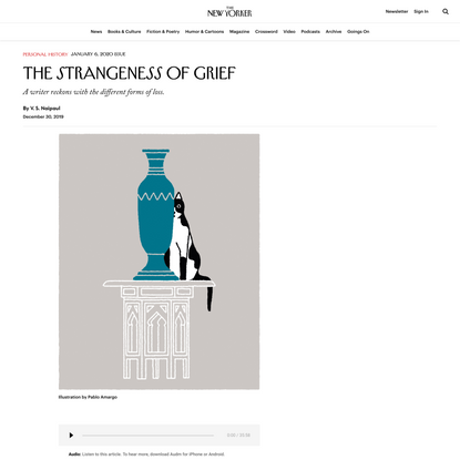The Strangeness of Grief