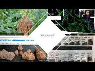 Soil Basics & Technosols - Dr. Maha Deeb-Collet | USI 5th Soils Symposium