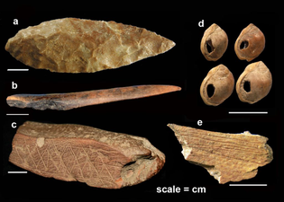 Homo sapiens Artifacts from Blombos Cave, South Africa (75-72 kya)