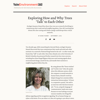 Exploring How and Why Trees 'Talk' to Each Other