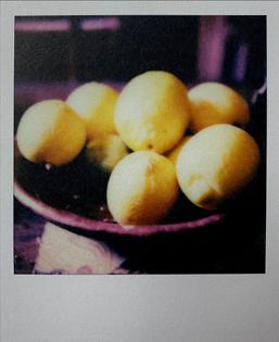 francois-halard_lemons.jpg