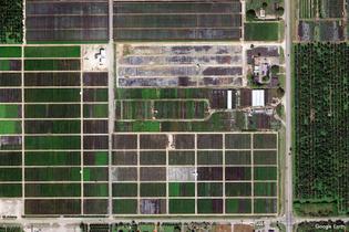 Homestead, Florida, United States (Google Earth View 1713)