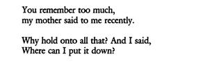 "Anne Carson, ""The Glass Essay"""