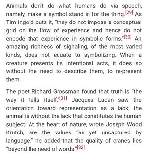 """""""animal dreams"""" by john zerzan"""
