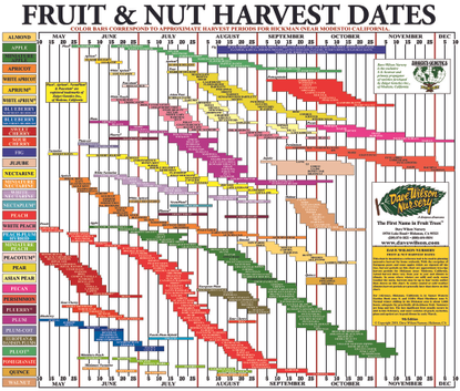fruit_nut_chart_hg_2018.pdf