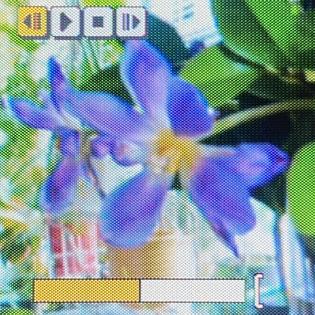 garden-brand-2.jpg