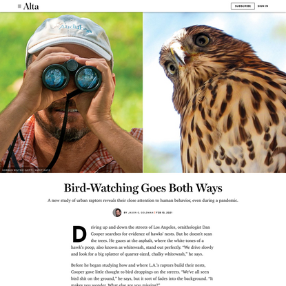 Bird-Watching Goes Both Ways