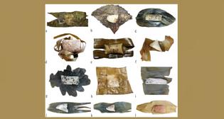 Different Types of Zongzi