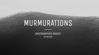Murmurations; Ornitographies project