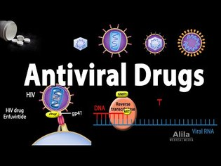Antiviral Drugs Mechanisms of Action, Animation