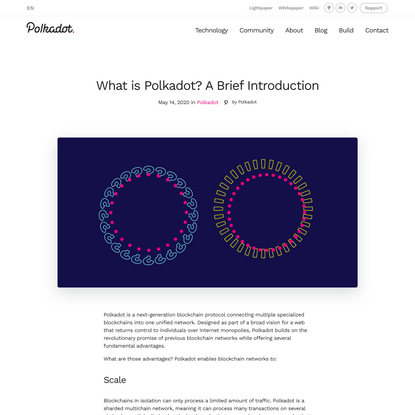 What is Polkadot? A Brief Introduction