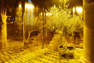 hicham-berrada-le-jardin-inalterable-photo-catherine-brossais-cdvo-3.jpg?auto=format-compress-crop=faces-entropy-cs=tinysrgb...