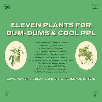 Eleven Plants for Dum-Dums & Cool Ppl