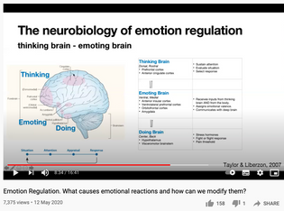 Emotion Regulation. What causes emotional reactions and how can we modify them?