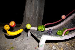 fruit-slide.jpg