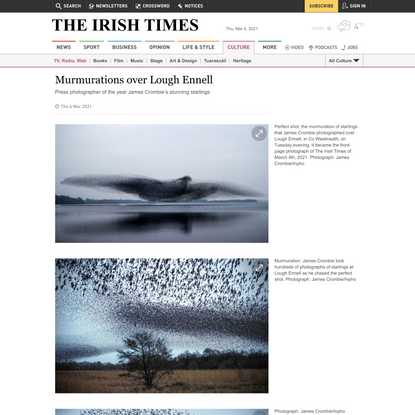 Murmurations over Lough Ennell