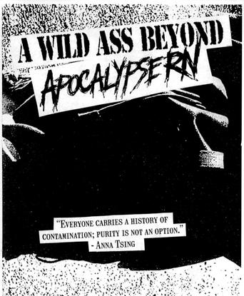 A Wild Ass Beyond: ApocalypseRN: Zine by American Artist, Nora Khan, Sondra Perry, and Caitlin Cherry